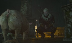 The-Witcher-3-Wild-Hunt-Fools-Gold-DLC