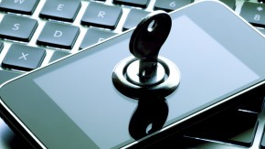 ants-padlocks-cyber-security