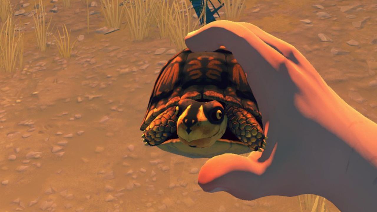 firewatch-turtlejpg-0d7c1e_1280w