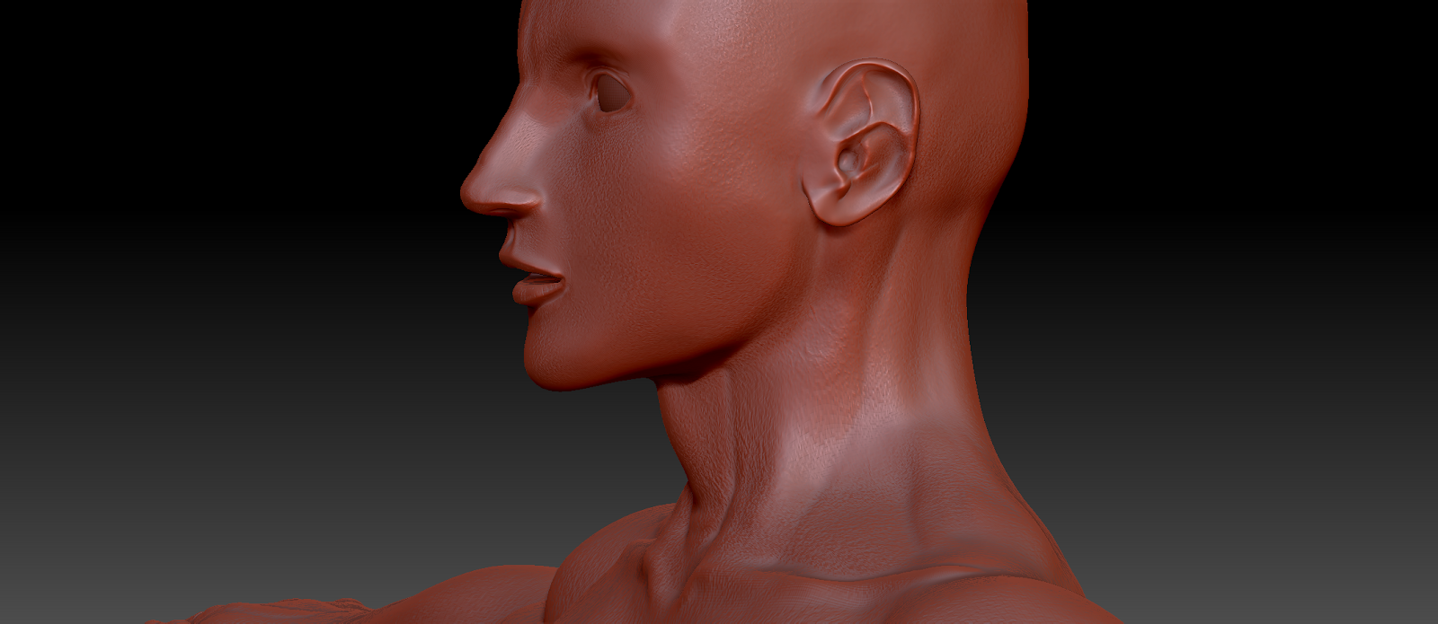 Zbrush tool used for 3D modeling